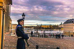 21 janvier 2017 : Gardez dans le palais royal de Stockholm, Suède Photo libre de droits