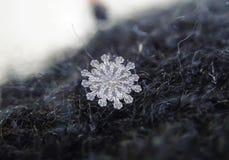 janvier 12 rares - flocons de neige d?grossis image libre de droits