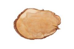 Jałowcowej tekstury rżnięty drewno odizolowywający na bielu Fotografia Royalty Free