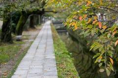 Japão Imagens de Stock