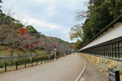 Japão Hikone Castle imagem de stock