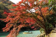Japón Arashiyama Momiji Imagenes de archivo