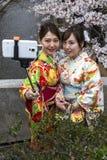 Japón, Kyoto, 04/05/2017 Las muchachas japonesas jovenes en kimono toman un selfie en el fondo de Sakura foto de archivo