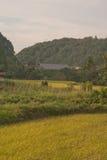 Japón rústico Imagenes de archivo