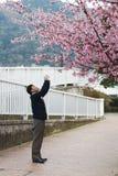 Japón Sakura Imágenes de archivo libres de regalías