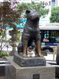 japón Tokio Distrito de Shibuya Estatua del perro Hachiko imagen de archivo