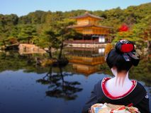 Japan. Geisha looking to the Golden Temple in Kyoto,Japan Stock Images