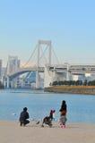 Japan. Tokyo, Japan - 2 January, 2012: Japanese family enjoying the view of the Rainbow Bridge in Daiba, Tokyo Stock Photography