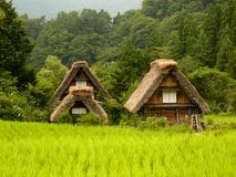 Japan. Ese traditional farms in central Stock Image