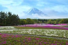 japan royalty-vrije stock fotografie