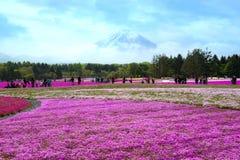 japan royalty-vrije stock afbeeldingen