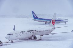 Japan Airline ready to Flight. Royalty Free Stock Photo