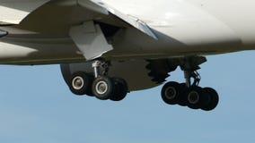 Japan Airlines Боинг B787 приземляясь к Narita акции видеоматериалы