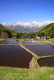 Japan Alps and terrace paddy field Royalty Free Stock Photos