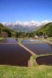 Japan Alps and terrace paddy field. Hakuba village Aoni, Nagano, Japan Royalty Free Stock Photos