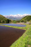 Japan Alps and terrace paddy field Royalty Free Stock Photo