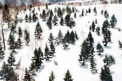 Japan Alps , Winter moutains with snow. Royalty Free Stock Photography