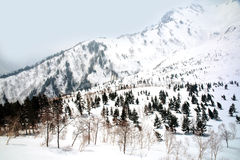 Japan Alps , Winter moutains with snow. Stock Image