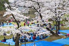 Japan - April 11, 2016: De Japanse Mensen genieten van het eten en sakura bezienswaardigheden bezoekend in Hanami-de tijd van Fes Royalty-vrije Stock Fotografie