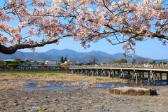 Japan - Arashiyama Royalty Free Stock Images