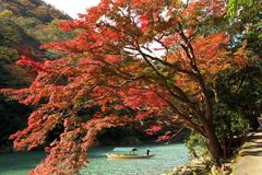 Japan Arashiyama Momiji Stockbilder