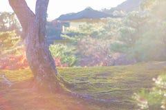 Japan Autumn Garden in Kyoto Stock Photo