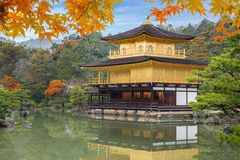 Japan Autumn season of Kinkakuji Temple The Golden Pavilion in Royalty Free Stock Photo