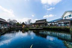 Japan. A beautiful Pond under the sun Royalty Free Stock Photos
