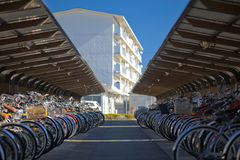 Japan bicycle parking lot Stock Images