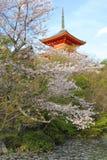 Japan bij de lente Stock Foto