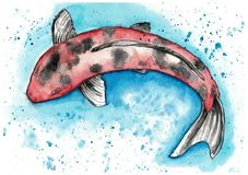 Japan carp koi royalty free illustration