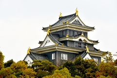 Japan castle Okayama macro view royalty free stock photos