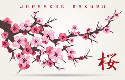 Japan cherry blossom tree branch. Japan cherry blossom branching tree vector illustration. Japanese invitation card with asian blossoming plum branch Stock Photo