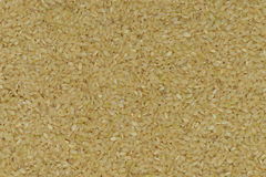 Japan Coarse rice background, Japan brown rice Royalty Free Stock Photography
