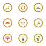 Japan culture icons set, cartoon style. Japan culture icons set. cartoon style set of 9 japan culture vector icons for web design Royalty Free Stock Images