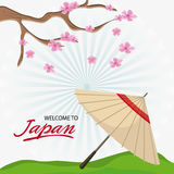 Japan culture and landmark design. Umbrella and tree icon. Japan culture landmark and asia theme. Colorful design. Vector illustration Stock Photo