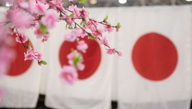 Japan culture symbol flag and cherry blossom royalty free stock photos