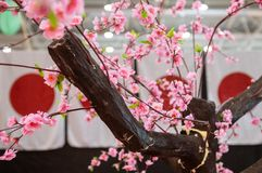 Japan culture symbol flag and cherry blossom stock images