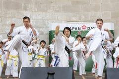 Japan Day 2013 Stock Image