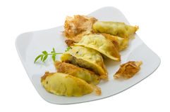 Japan dumplings - gyoza Royalty Free Stock Image