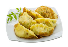 Japan dumplings - gyoza Royalty Free Stock Images