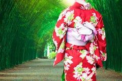 Japan för kimono för ung kvinna bärande traditionell på bambuskogen fotografering för bildbyråer