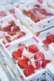 Japan - 24. Februar 2016:: große frische Erdbeere vom Bauernhof in J Stockbild
