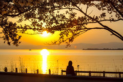 Japan Feng Park Sunset Royalty Free Stock Photos