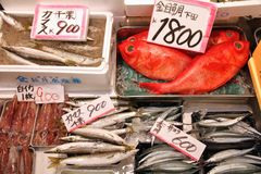 Japan fish market Royalty Free Stock Photography