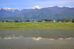 Japan fjällängar och risfältfält Arkivfoton