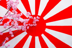 Japan flag with synthesis sakura flower Royalty Free Stock Images