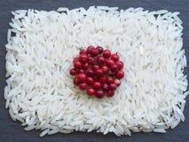 Japan flagga som göras av ris och smaktillsatser Arkivfoton