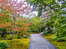 Japan Garden Peaceful. Beautiful garden japanese nature relaxation Royalty Free Stock Photography
