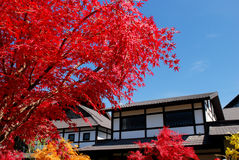 Japan garden and village Royalty Free Stock Photography